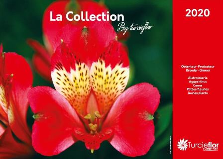 catalogue turcieflor 2020*